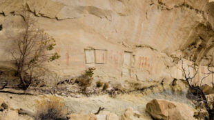 Thieves cut out Navajo images from this cliff face south of Bloomfield, New Mexico. Photograph courtesy Kenneth Russell.